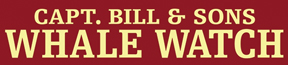 Capt. Bill & Sons
